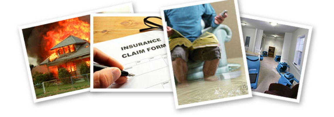 ServiceMaster Insurance in Naples