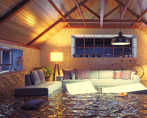 Water Damage Repair and Construction in Naples